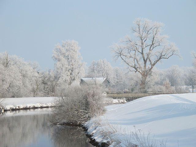 winter-postkarte-02